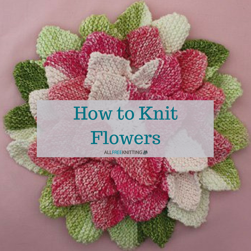 Knitting Flowers Design : How to knit flowers easy knitting patterns