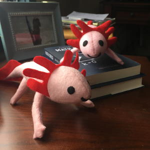 Colorful and Easy Axolotl Plushies