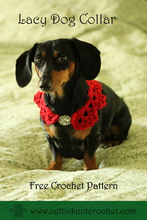 Lacy Dog Collar