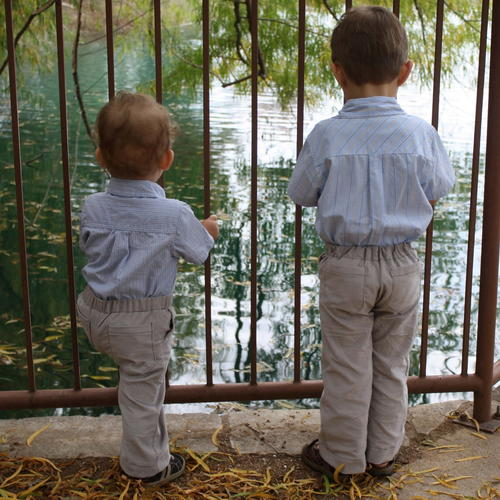 Boys' Mock Fly and Pocket Pants