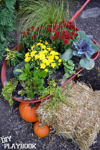 DIY Wheelbarrow Planter