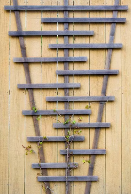 Stylish DIY Garden Trellis