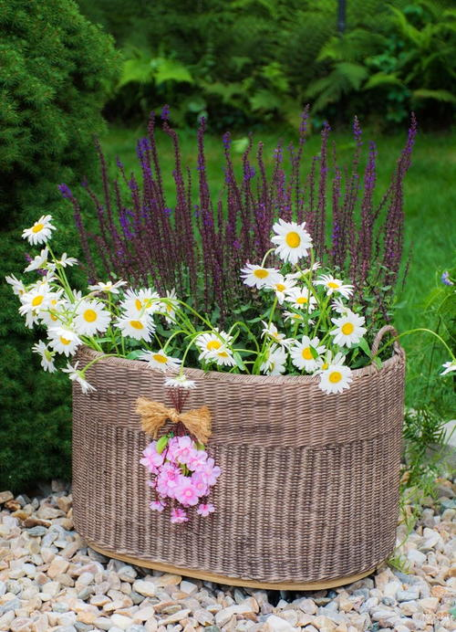 Planter Basket with Casters