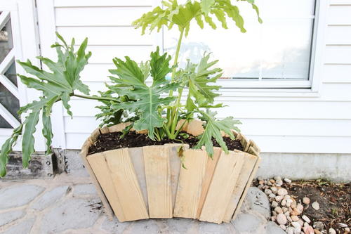 DIY Scalloped Wood Pallet Planter