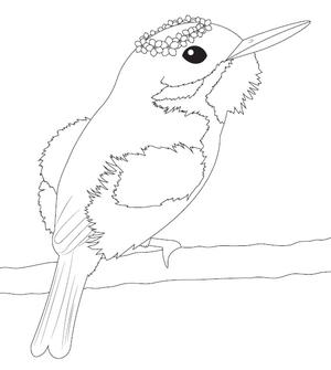 Flower Crowned Hummingbird Coloring Page | FaveCrafts.com