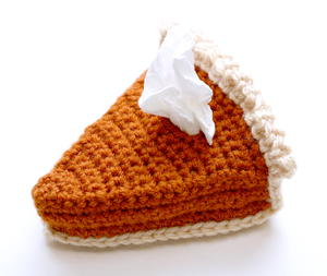 Pumpkin Pie Crochet Tissue Cozy