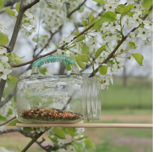 Effortless Mason Jar Bird Feeder