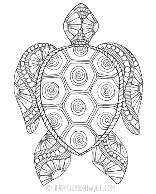 Gorgeous Sea Turtle Coloring Page