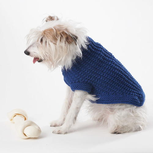 image about Dog Coat Sewing Patterns Free Printable identified as Sapphire Knit Canine Sweater