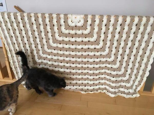 graphic relating to Virus Blanket Pattern Free Printable called What is a Virus Blanket? + 5 Cost-free Virus Crochet Behavior