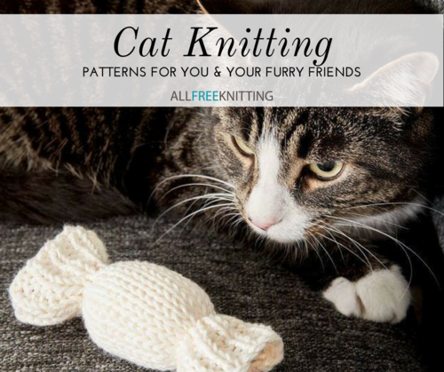 Cat Knitting