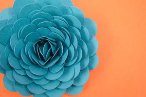 Paper Succulent Flower Tutorial
