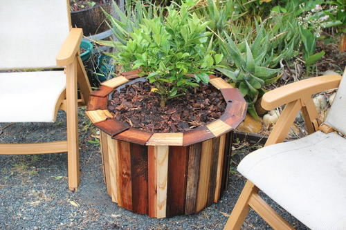 DIY Garden Planter from Rain Barrel