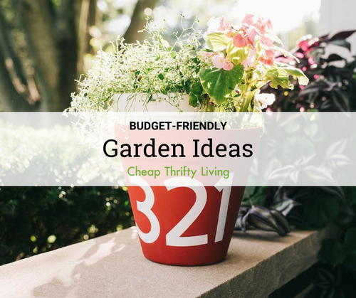 15 Budget-Friendly Garden Ideas