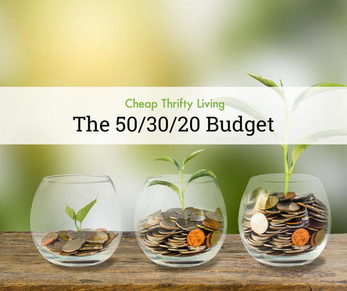 The 503020 Budget Budgeting for Beginners