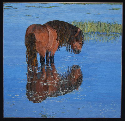 Sable Island Horse No. 1, Celebration XXII