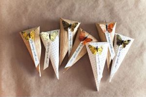 Butterfly Wedding Cones