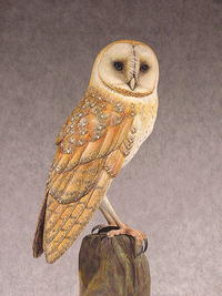 Rodents Beware--Part Two: Painting the Barn Owl