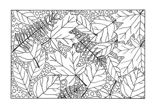 - Medley Of Fall Leaves Adult Coloring Page FaveCrafts.com