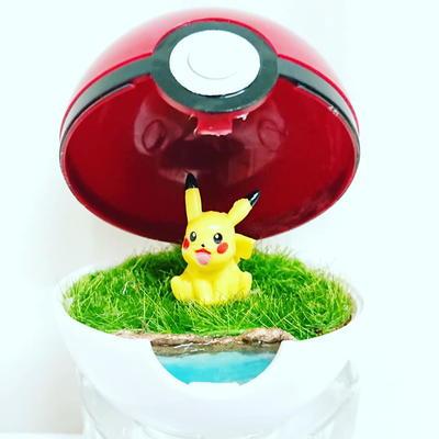 Diy Pokemon Terrarium Diyideacenter Com