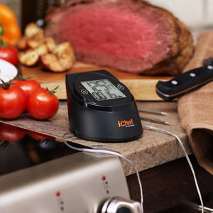 Maverick WIFI Digital and Wireless Roasting Thermometer Giveaway