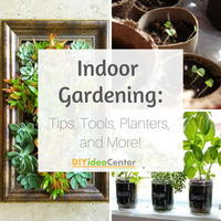 Indoor Gardening 101: How to Garden Indoors, Indoor Gardening Tools, and Planting Ideas