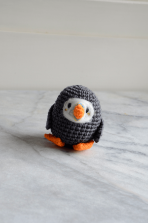 Pocket Sized Puffin
