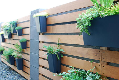 DIY Living Plant Wall