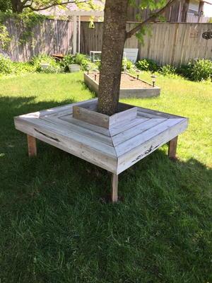 Sensational Tree Bench Made With Reclaimed Wood Diyideacenter Com Creativecarmelina Interior Chair Design Creativecarmelinacom
