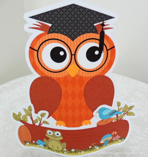 Graduation Owl Decoration