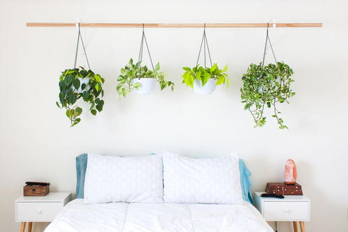 Unique Hanging Plant Headboard DIY