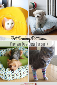 16 Pet Sewing Patterns (That Are Dog-Gone Purrfect)