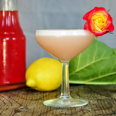 Limoncello and Rhubarb Cocktail – Barb's Special Roux
