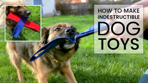 How to Make an Indestructible Dog Toy
