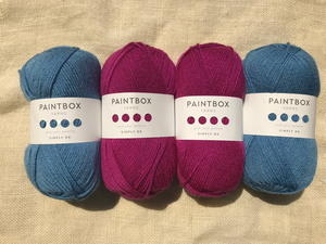 Paintbox Raspberry Pink and Dolphin Blue Yarn Bundle Giveaway