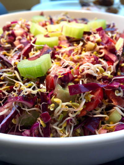 Broccoli Sprouts and Red Cabbage Salad