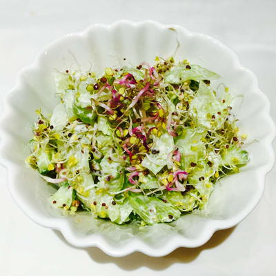Cucumber Broccoli and Radish Sprouts Salad