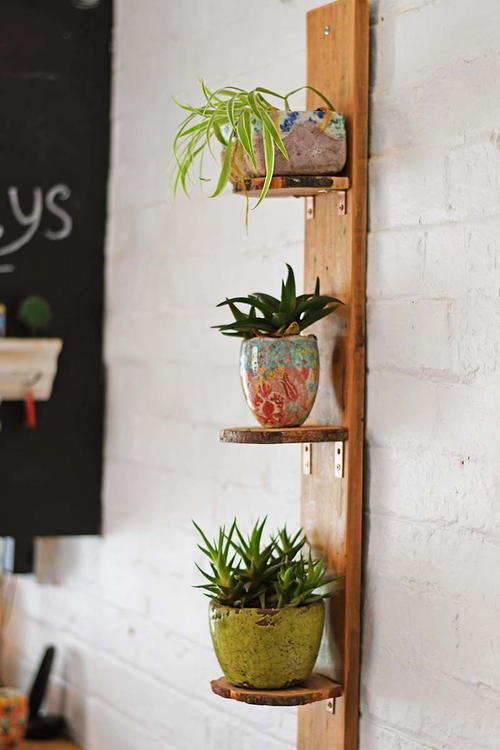 DIY Woodslice Plant Shelves