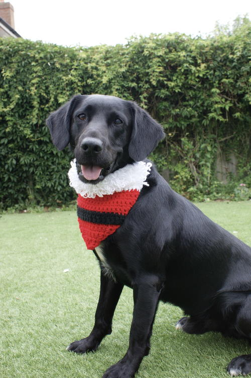 Santas Best Friend - Dog Bandanna