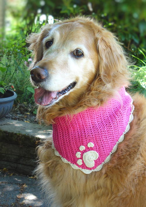 Crochet Dog Bandana