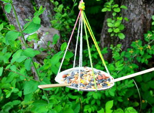 How to Make a Seashell Bird Feeder