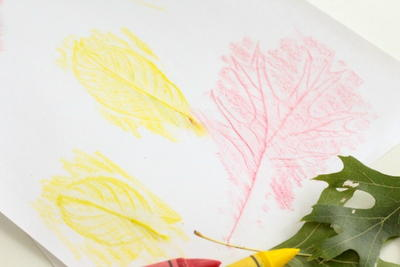 Leaf Rubbings Idea