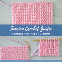 Tunisian Crochet Guide: 5 Things You Need To Know