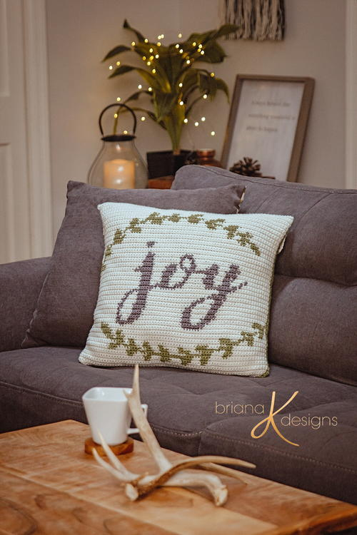 Joy Crochet Pillow Cover