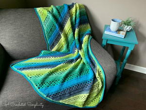 On the Bias Rectangular Afghan