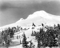The Historic Rugs of Timberline Lodge