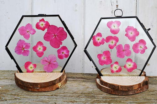 Wood slice frame stand and pressed flowers