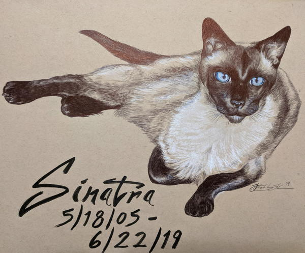 A commission piece Kim did in memoriam of Sinatra the cat. Drawn in ballpoint pen.