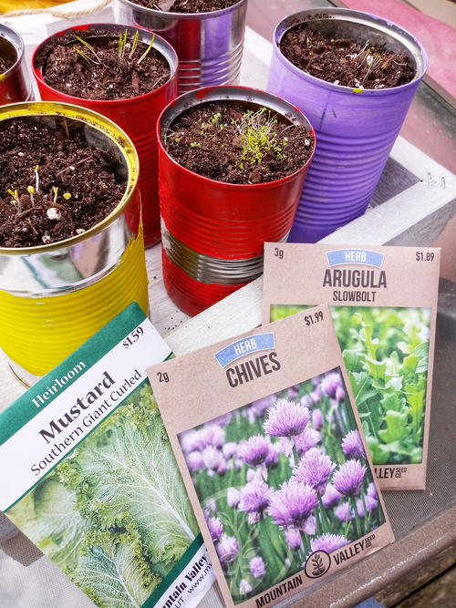 How To Create Recycled Container Herb Garden