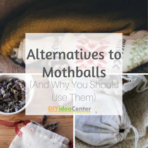 Alternatives to Mothballs And Why You Should Use Them